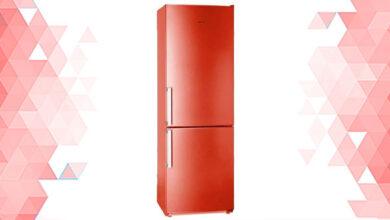 лучшие домашние холодильники