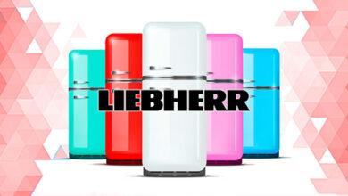 Liebherr холодильники: обзор моделей, характеристики, цены, плюсы, минусы